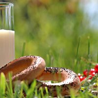 Why Bread and Milk Are Not the Enemy
