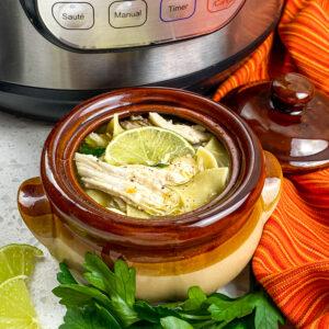 Chicken Noodle Soup Instant Pot Recipe